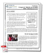 Congress' Attack on ACORN factsheet