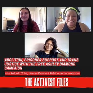 text reads Abolition, Prisoner Support, and Trans Justice with the Free Ashley Diamond Campaign