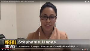 Stephanie Llanes on the Real News